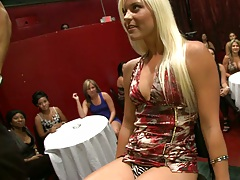 Dancing bear fun with sexy blondie raising her dress